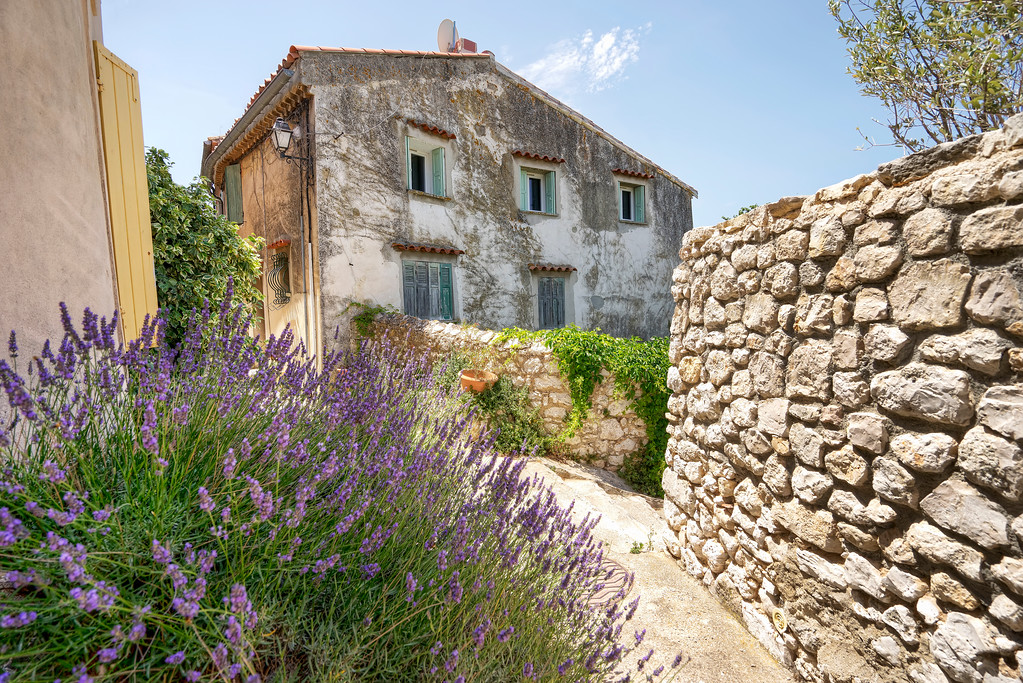lavender and an old house with brick wall and bue sky in ventabren provence