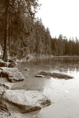 At Mummelsee lake