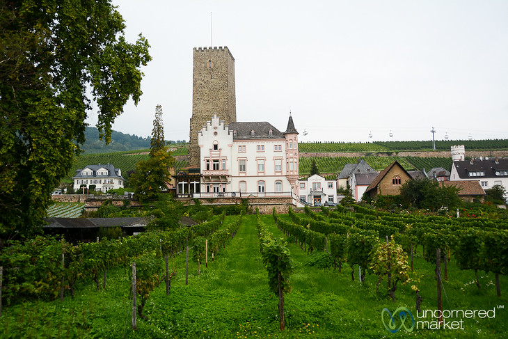 Boosenburg Castle and Vineyard - Rüdesheim, Germany