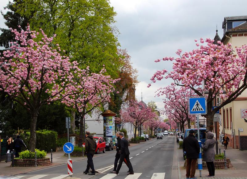 Bad Homburg Germany