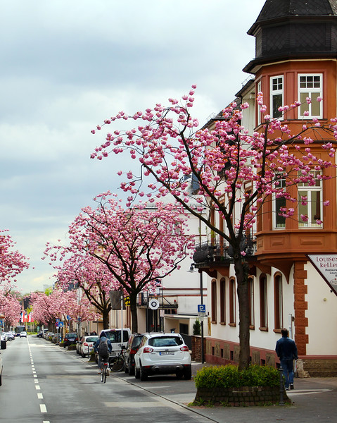 Bad Homburg Germany