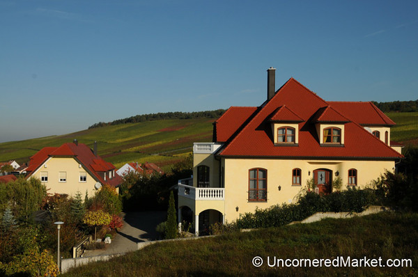 Looking Out Over Vineyards and Eibelstadt - Franconia, Germany