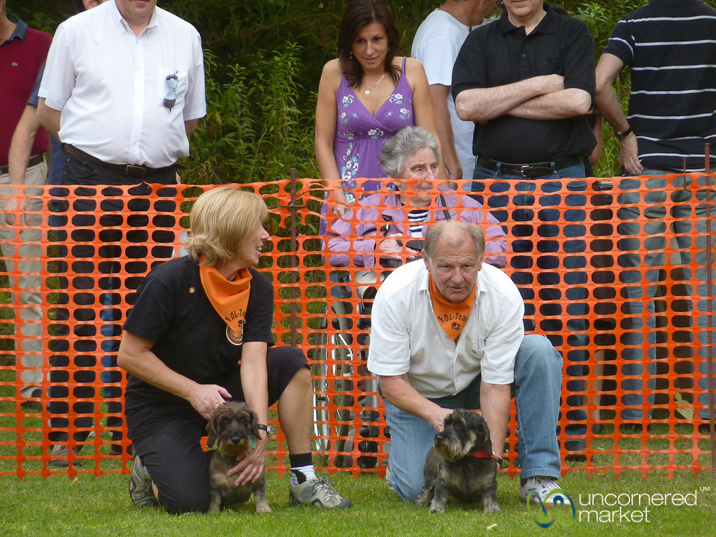 Double Dogs, Dachshund Races - Berlin