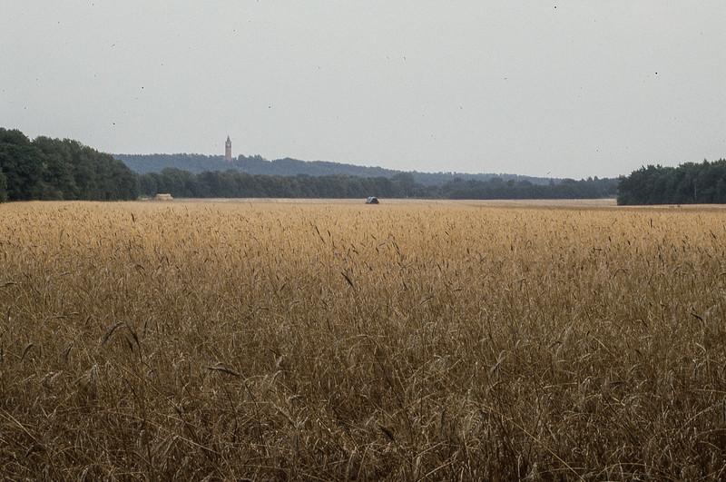 West Berlin Harvest