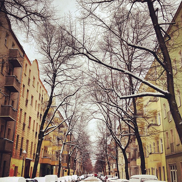 This is what 100% chance of snow looks like in our Berlin 'hood. #stillwinter