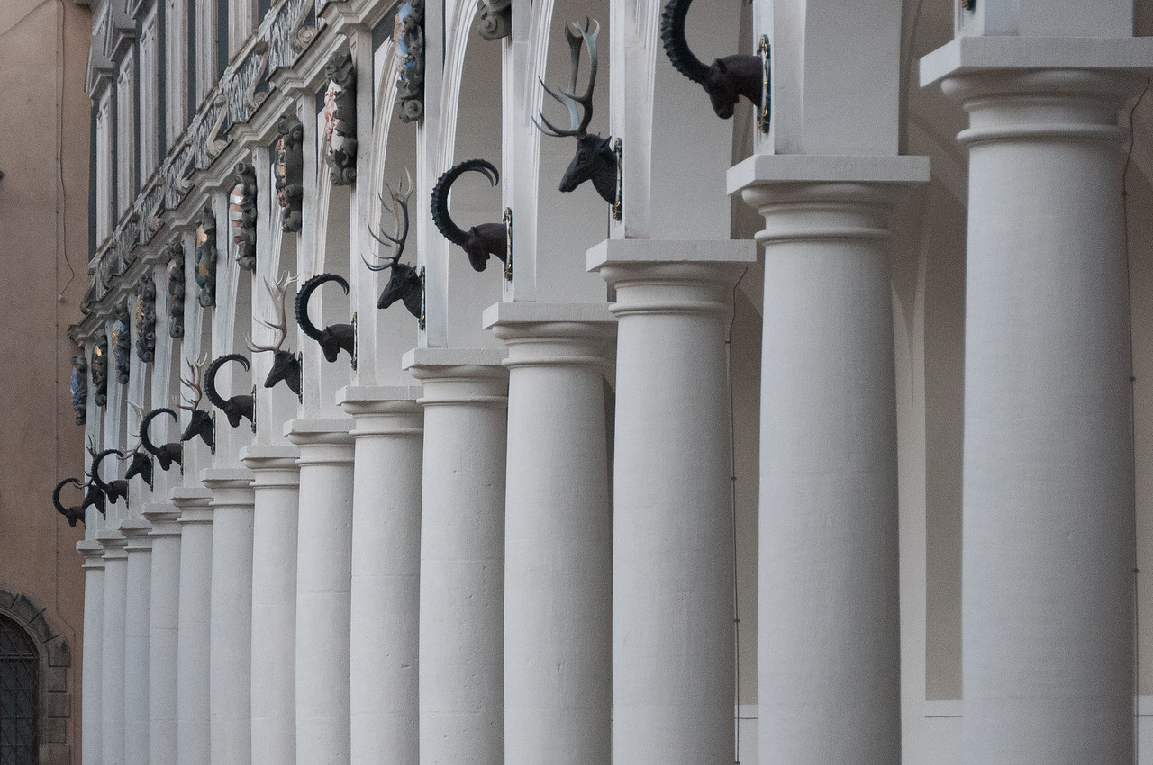 Deer and ram heads on pillars of a building in Dresden, Germany
