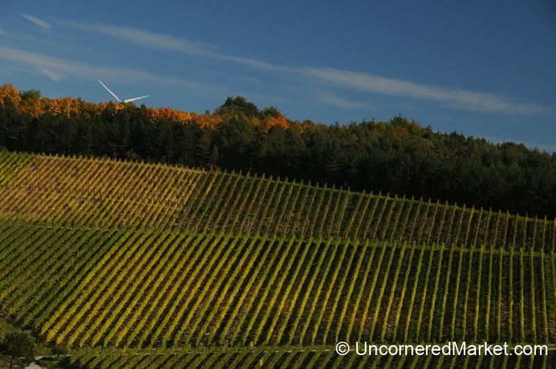 Vineyards and a Windmill - Thüngersheim, Germany