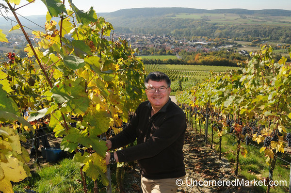 Putting Audrey's Father to Work - German Wine Harvest Event in Northern Bavaria