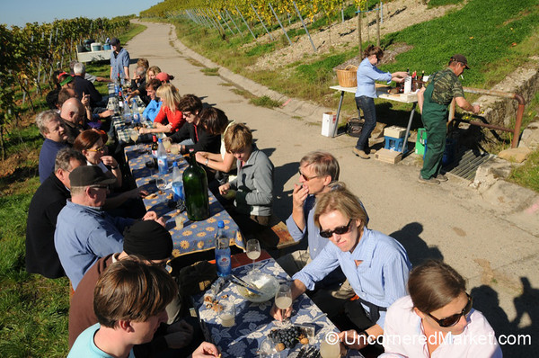 Lunchtime at the Vineyard - Thüngersheim, Bavaria