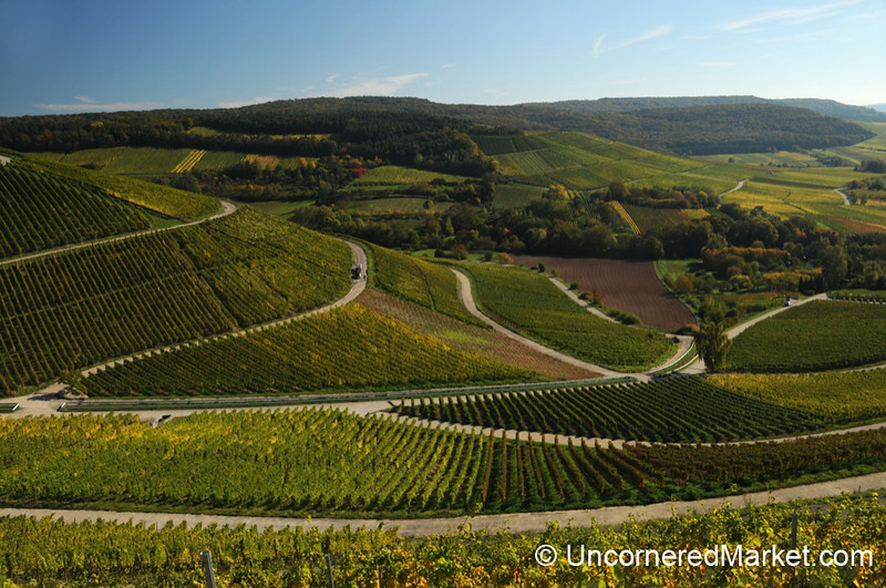 Perfect Franconian Vineyard Symmetry