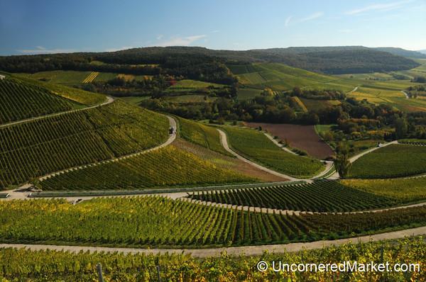 Perfect Franconian Vineyard Symmetry