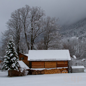 WINTER WOODSHED