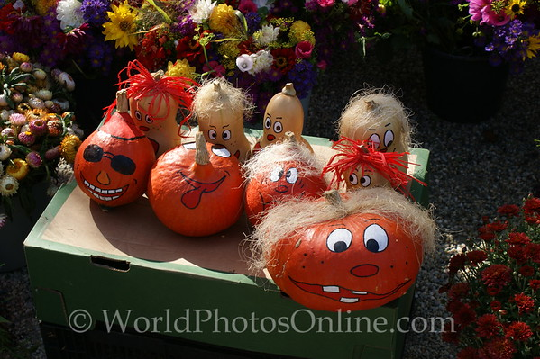 Passau - Pumkins at Market