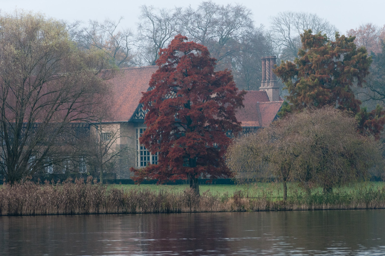 Beautiful trees along the bank of Lake Schwielowsee in Potsdam, Germany