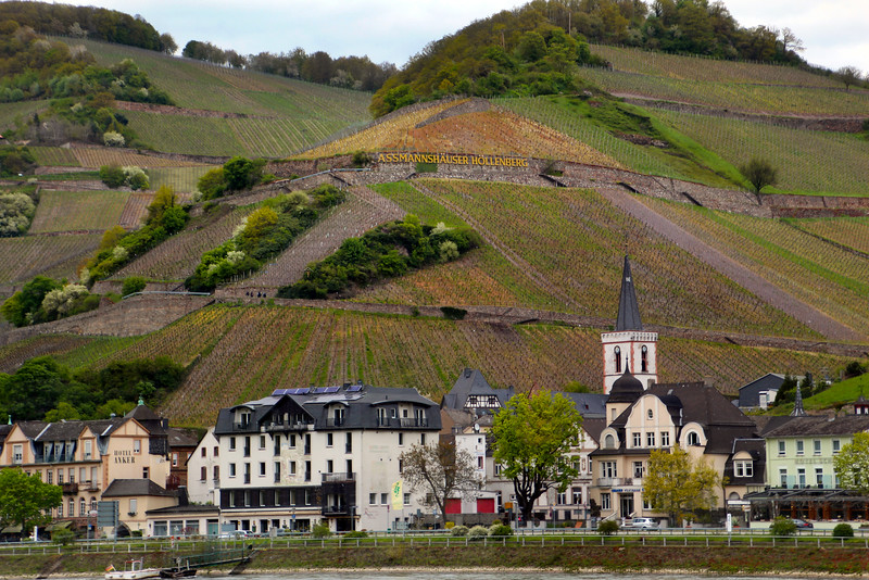 Rüdesheim Germany, Assmanshausen, View on Town from River Boat