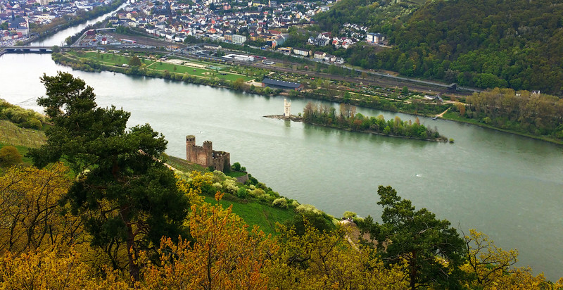 Rüdesheim Germany, View on Ehrenfels Castle and Mouse Tower