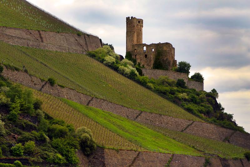 Rüdesheim Germany, View on Ehrenfels Castle from Rhine River