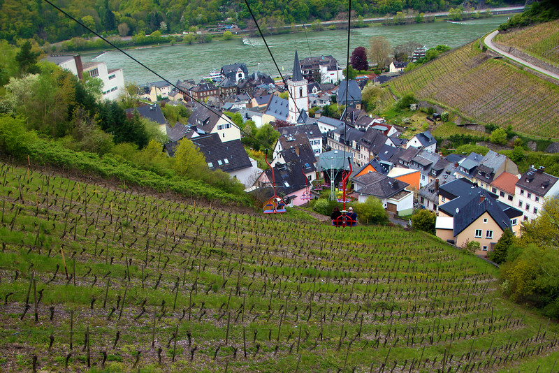 Rüdesheim Germany, Descent into the Town of Assmannshausen from Tram