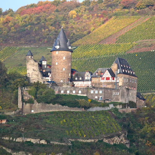 Wine River / Rhine River Cruise on AMAWaterways