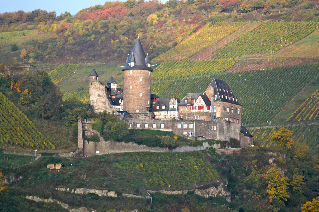 Castle and Vineyards - Rhine River Gorge, Germany