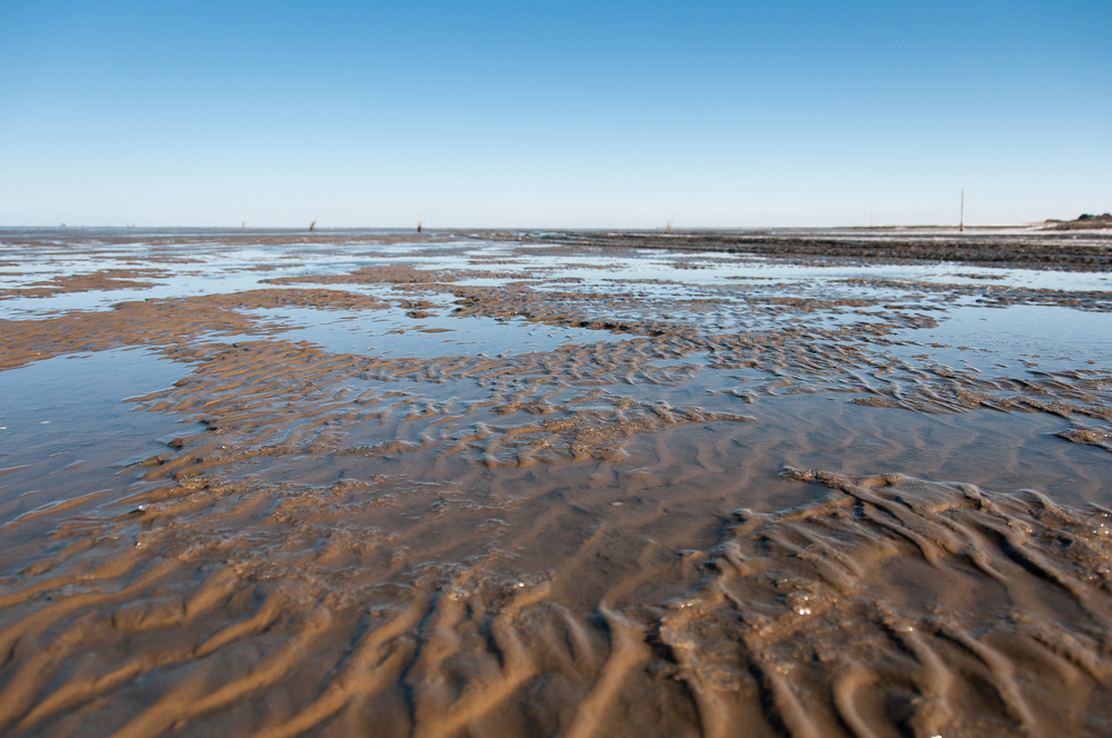 World Heritage Site #86: The Wadden Sea