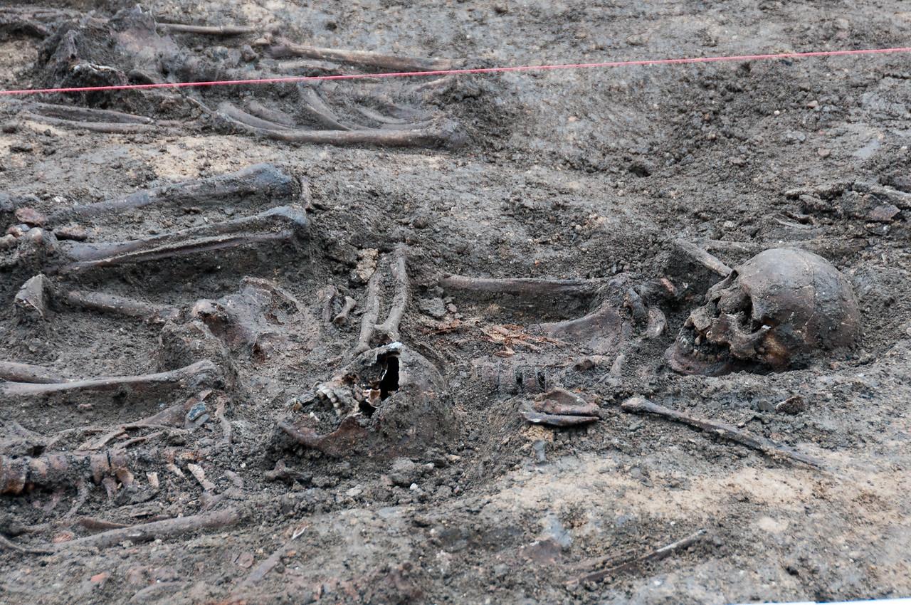 Skulls and bones on land in Weimar, Germany