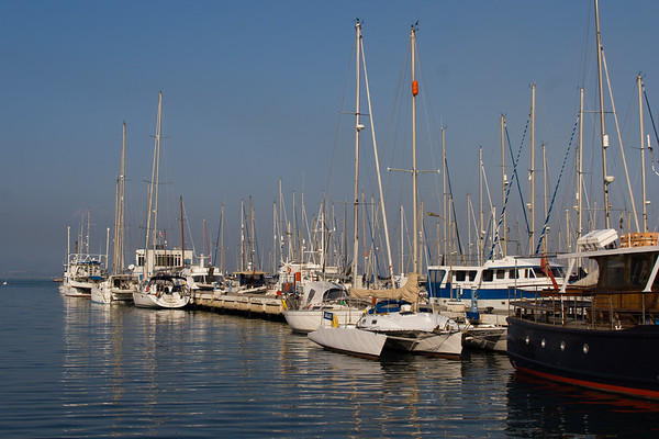 Gibraltar Dolphin Tour