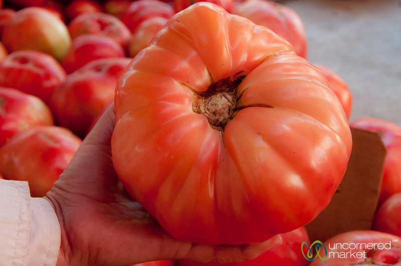 Massive Tomato at Heraklion Market - Crete, Greece
