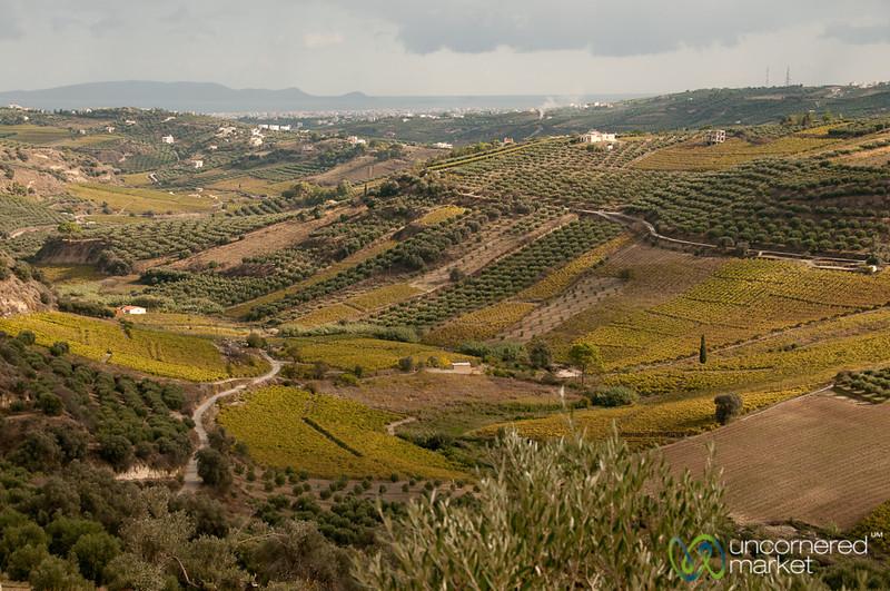 Crete Landscape and Agriculture - Greece
