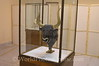 Crete - Iraklio - Archaeological Museum - Bull Headdress for High Priest