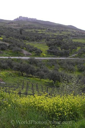 Crete - Countryside Central Region 2
