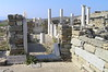 Delos - House of Dioskourides & Cleopatra