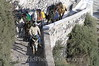 Santorini - Mule train on Stairs