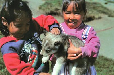 Ile de Kulusuk - Enfants inuits avec un bébé husky