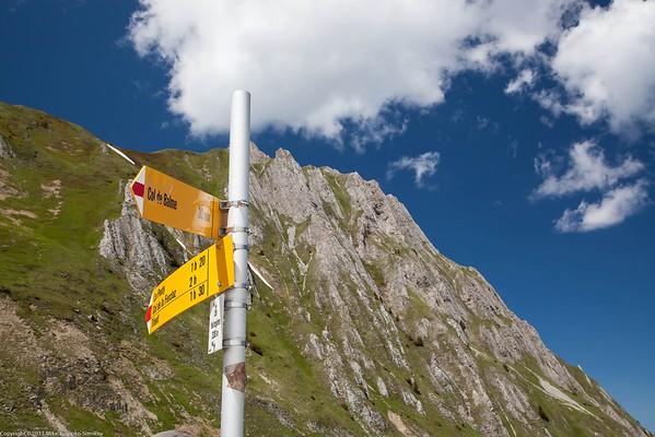 Descent from Col de Balme to Trient