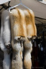 Fox furs hang in a stall in Kauppatori Market Square in  Helsinki Finland - A modern European city