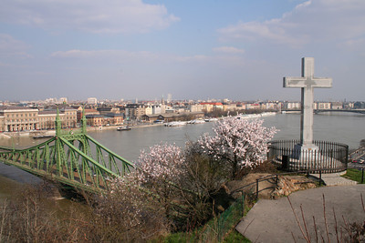 View of Freedom Bridge and Danube