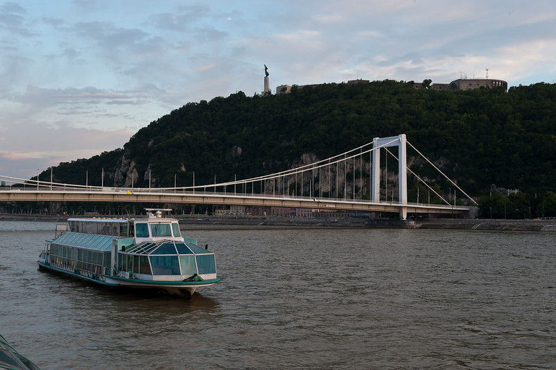 Danube River & Elizabeth Bridge