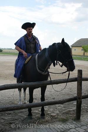 Kalocsa - Horse Show 2