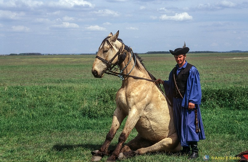 Plains Herdsman / Horse<br /> Hortobagy (Puszta), Hungary