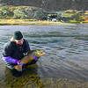 biologist with tagged brown trout