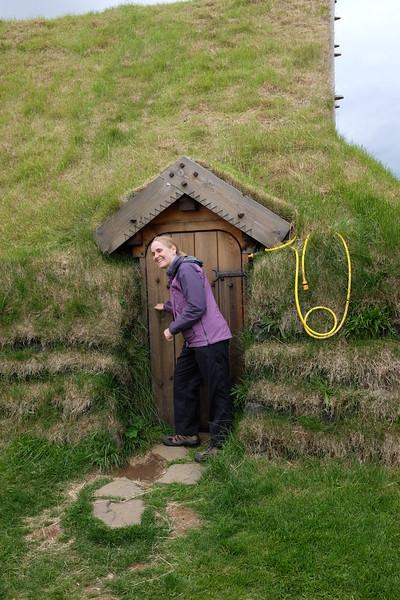 Elf door on the Skálholt chapel