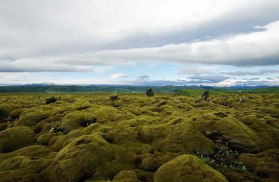 Moss-covered lava field, Skaftarhreppur district