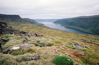Highlands above Flokalundur, overlooking Arnarfjordur