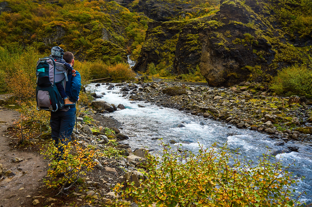 Contemplating the river on the way to Glymur, Iceland