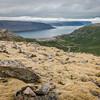 Mossy Fjord