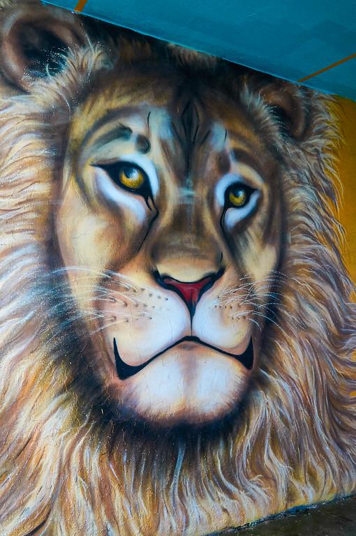 Lion mural in Reykjavík, Iceland