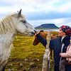 Meeting with horses at Kirkjufellsfoss, Iceland