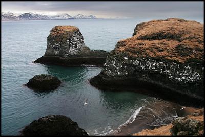 Coast at Arnarstapi