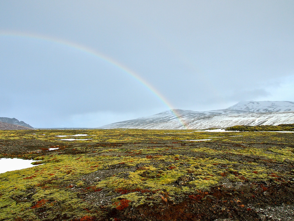 Rainbow over a lava field in Iceland